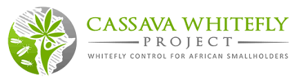 African Cassava Whitefly project